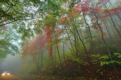 Photograph - Autumn Fall Colors - A Foggy Drive Through Paradise by Dan Carmichael
