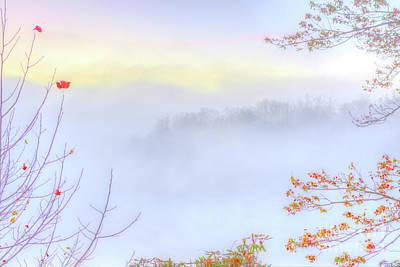 Photograph - Autumn Fall Colors A Select Few by Dan Carmichael