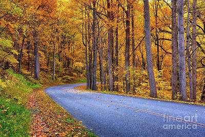 Photograph - Autumn Fall Colors - Around The Bend by Dan Carmichael