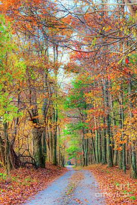Photograph - Autumn Fall Colors - Blue Ridge Country Road by Dan Carmichael