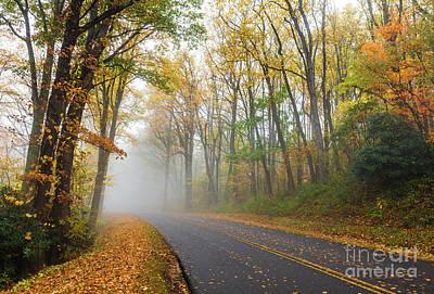 Photograph - Autumn Fall Colors - Blue Ridge Wonderland by Dan Carmichael