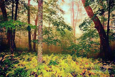 Digital Art - Autumn Fall Colors - Brilliant Ferns In The Blue Ridge Ap by Dan Carmichael