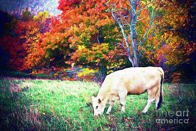 Digital Art - Autumn Fall Colors - Cow Grazing In Colorful Pasture Ap by Dan Carmichael