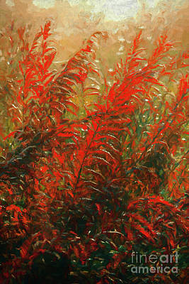 Painting - Autumn Fall Colors - Fall Ferns Ap by Dan Carmichael