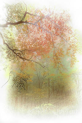 Autumn Fall Colors - Fog Filled The Trees Ap Art Print