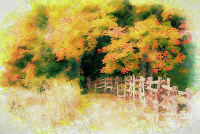 Autumn Fall Colors - Into The Cave Ap Art Print