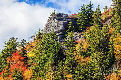 Photograph - Autumn Fall Colors - Mountains Of Color by Dan Carmichael