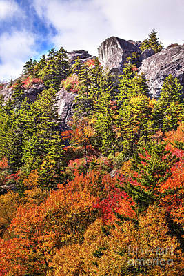 Photograph - Autumn Fall Colors - Pretty Peak by Dan Carmichael