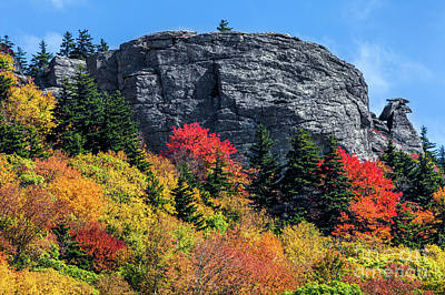 Autumn Fall Colors - Rocks And Colorful Trees Art Print