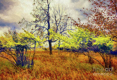 Autumn Fall Colors - Shrubs, Ferns, And Stormy Skies Ap Art Print