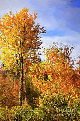 Painting - Autumn Fall Colors - Yellow Trees Blue Sky Ap by Dan Carmichael