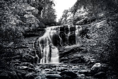 Autumn Photograph - Autumn Fall In Black And White by Chrystal Mimbs