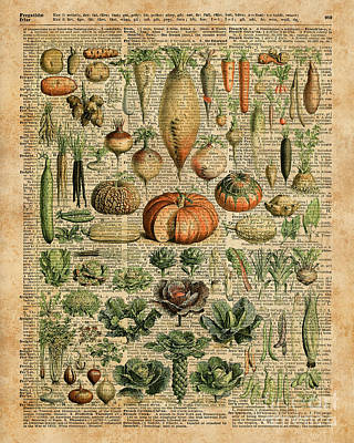 Tapestries - Textiles Mixed Media - Autumn Fall Vegetables Kiche Harvest Thanksgiving Dictionary Art Vintage Cottage Chic by Jacob Kuch