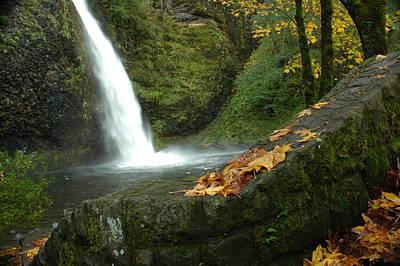 Photograph - Autumn Falls by Lori Mellen-Pagliaro