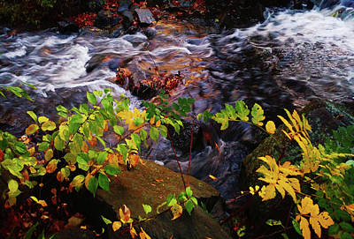 Photograph - Autumn Falls by Roger Bester