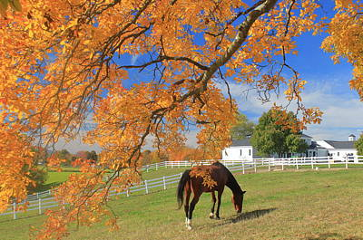 Photograph - Autumn Farm by John Burk