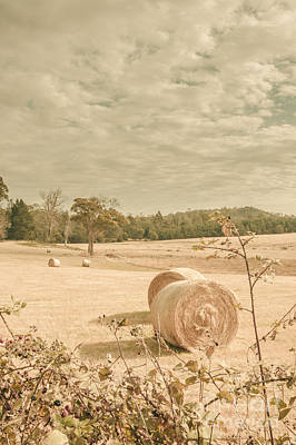 Bail Photograph - Autumn Farming And Agriculture Landscape by Jorgo Photography - Wall Art Gallery