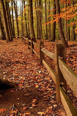 Photograph - Autumn Fence by Angie Tirado