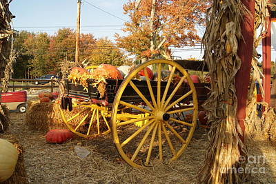 Photograph - Autumn Festivities by Margie Avellino