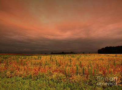 Photograph - Autumn Field, Stormy Sunset by Charles Owens