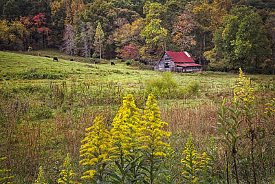 Autumn Fields Art Print by Debra and Dave Vanderlaan