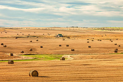 Homestead Photograph - Autumn Fields by Todd Klassy