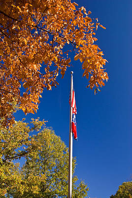 Photograph - Autumn Flag by Douglas Barnett