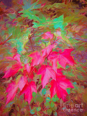 Mixed Media - Autumn Flame by Susan Lafleur