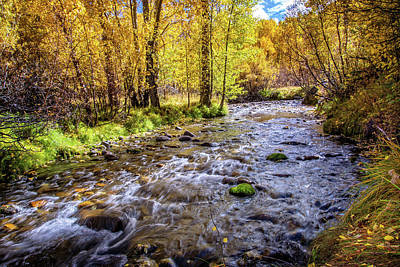 Photograph - Autumn Flow At Mcgee Creek by Lynn Bauer