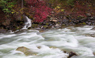 Photograph - Autumn Flow by Idaho Scenic Images Linda Lantzy