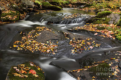 Photograph - Autumn Flow by Karin Pinkham