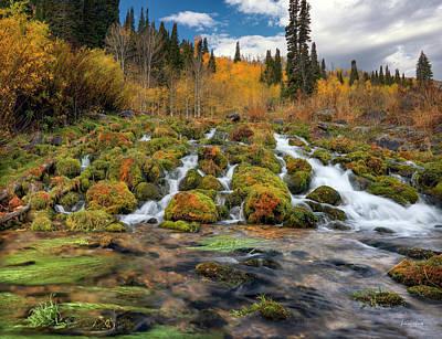 Photograph - Autumn Flow by Leland D Howard