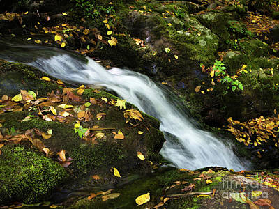 Photograph - Autumn Flow, Shenandoah National Park, Virginia  -74189 by John Bald