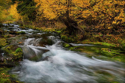Fall Photograph - Autumn Flows by Leland D Howard
