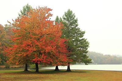 Photograph - Autumn Fog by Allen Nice-Webb