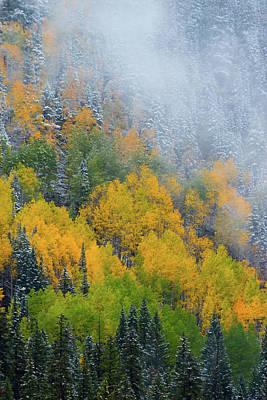 Photograph - Autumn Fog And Snow by John De Bord