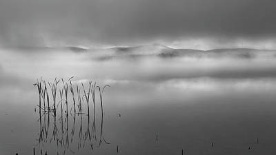 Photograph - Autumn Fog Black And White by Bill Wakeley