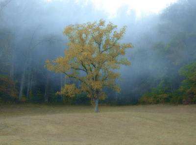 Photograph - Autumn Fog In Cades Cove by Dan Sproul