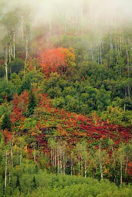 Photograph - Autumn Fog by Johnny Adolphson