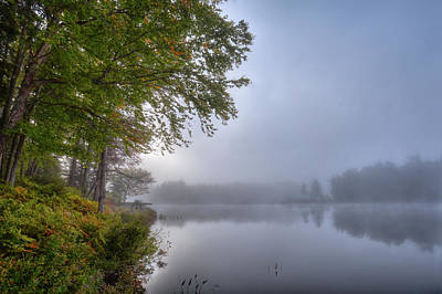Art Print featuring the photograph Autumn Fog On West Lake by David Patterson