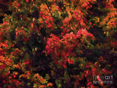 Autumn Foliage 4 Art Print by Lanjee Chee