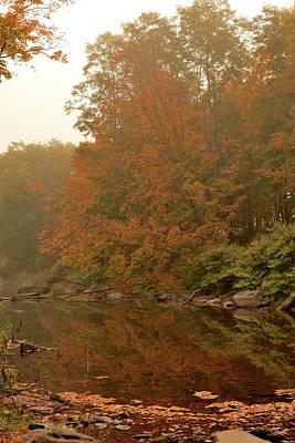 Autumn Photograph - Autumn Foliage by Barbara Lobosco
