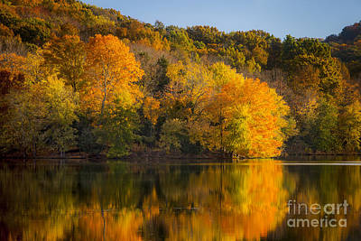 Autumn Foliage Art Print by Brian Jannsen