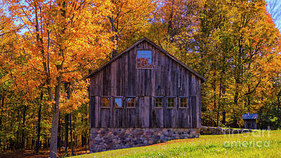 Fine Dining - Autumn foliage in Middlebury Vermont by Scenic Vermont Photography