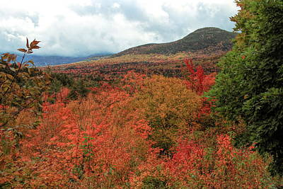 Photograph - Autumn Foliage In White Mountains New Hampshire by Dan Sproul