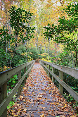 Photograph - Autumn Footbridge by Carol VanDyke