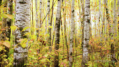 Digital Art - Autumn Forest by Lori Dobbs