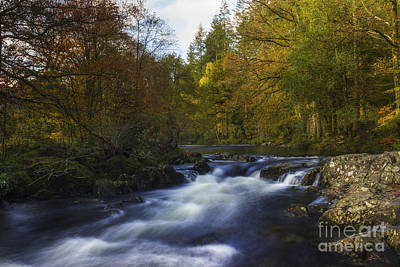 Photograph - Autumn Forest River by Ian Mitchell