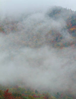 Photograph - Autumn Forest Through The Clouds by Dan Sproul