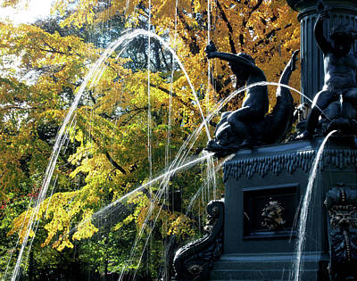 Photograph - Autumn Fountain by Rod Stewart